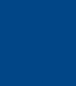Onlife Üzleti Konferencia: Magyarország 1. teljes értékű online üzleti konferenciája 12